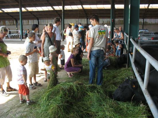 Visite guidée élevage