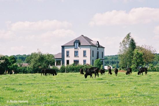 ferme-chateau-vert-g.jpg